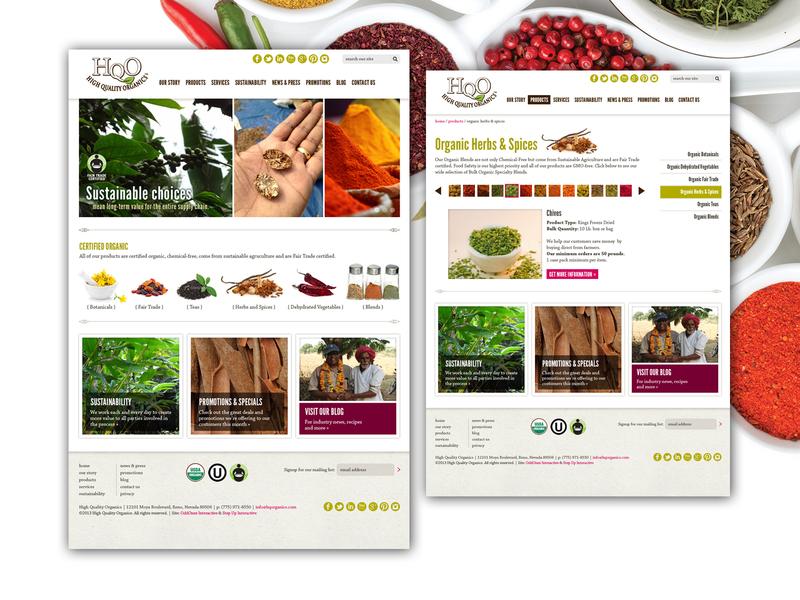 HQO Website web development company web developement web design uxdesign ux ui design ui branding design