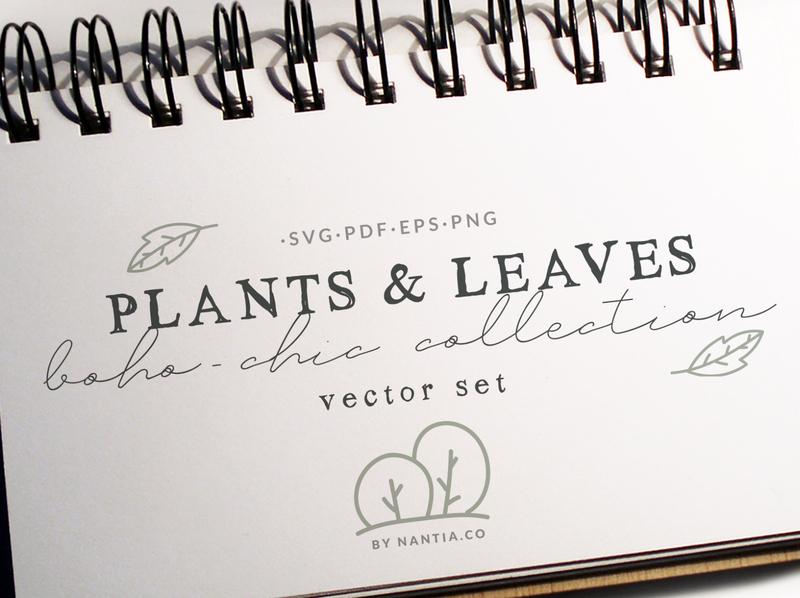 100 Boho Chic Plants and Leaves Vectors