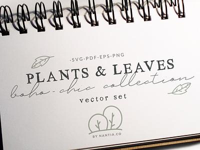 100 Boho Chic Plants and Leaves Vectors graphic design resources botanical illustrarion plants illustrations plants and leaves nantiaco graphics illustration