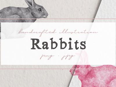 Hand drawn Rabbits Illustrations by Nantia co rabbit artwork rabbit clipart rabbits nantiaco graphics