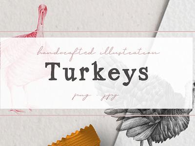 Hand drawn Turkeys Illustrations turkey artwork turkey illustration nantiaco graphics