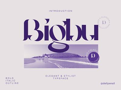 Bigbury - Vintage Serif Typeface modern logo branding serif typeface serif modern fonts font