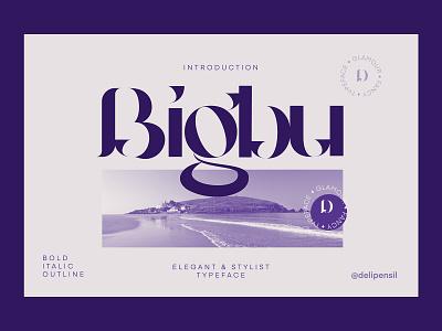 Bigbury - Vintage Serif Typeface fonts vector uiux purple clean app mobile inspiration illustration ux ui