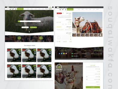 ux ui souqelwakfa web web web design ux ui wireframe protopie photoshop illustrator sketch xd design