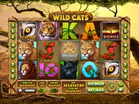 "Slot machine for SALE – ""Wild Cats"""