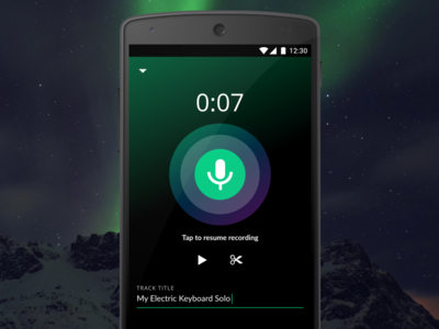 Audio Recording - Northern Lights