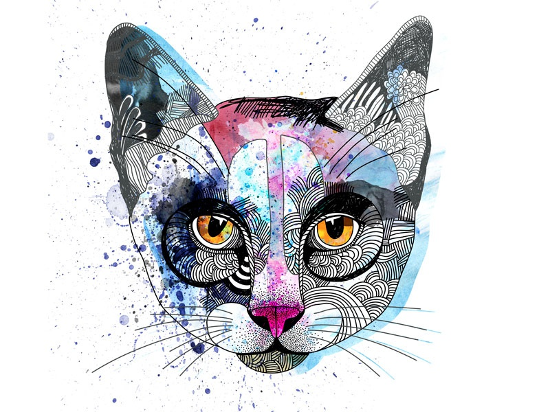Cat design cute art cute animal cute cat vector painting illustration drawing digital art animal illustration animal