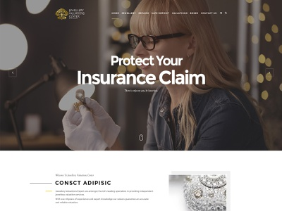 Protect Your Insurance Claim Web Design website webpage web landing page landingpage landing design illustration typography creative site concept branding