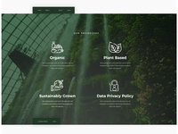 Our Philosophy Web Page Design