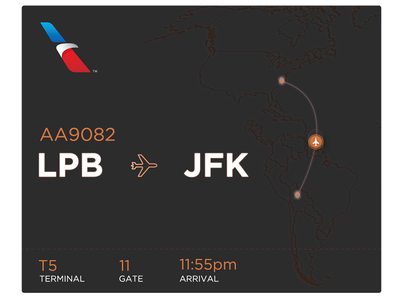 Flight Airline Info UI #30dayUI - Day 6 plane data flight airline map white clean chart simple graph ui