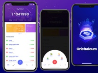 Bitcoin App Wallet Design