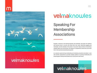 Velma Knowles Brand Identity Design - Personal Branding