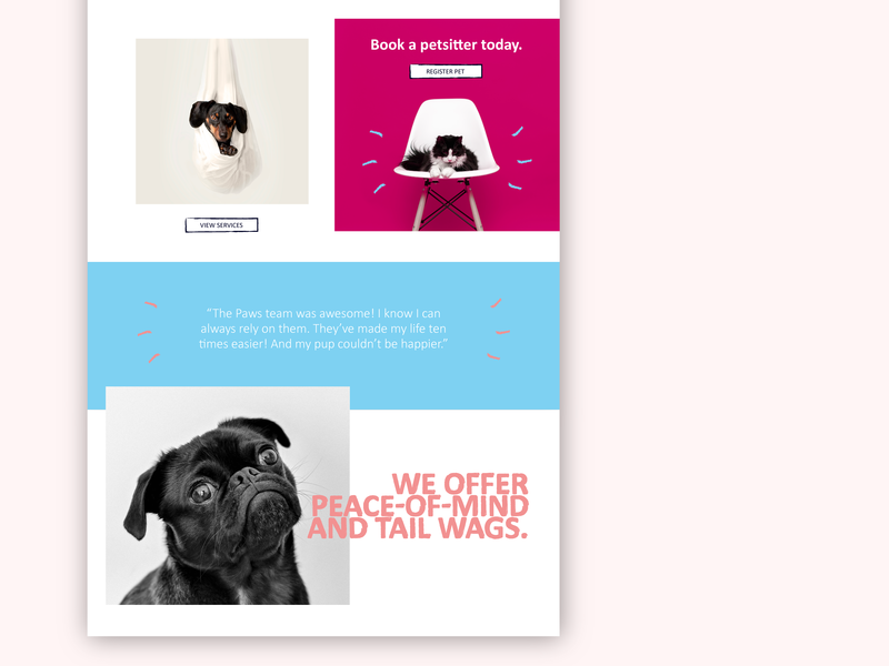 Paws Pet-sitting Co - Landing Page (Part 02) ui passion project company branding typography design identity branding user interface design web design