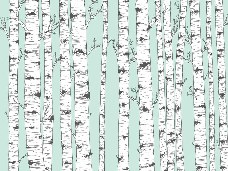 birch tree vector by josie lyn dribbble rh dribbble com birch tree vector background birch tree vector graphic