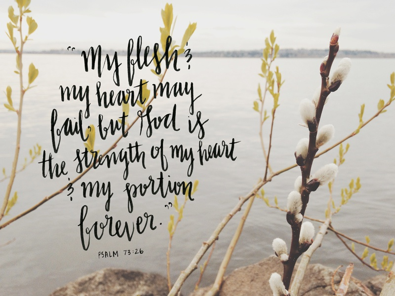 Psalm 73 scripture handwritten lettering photography typography design