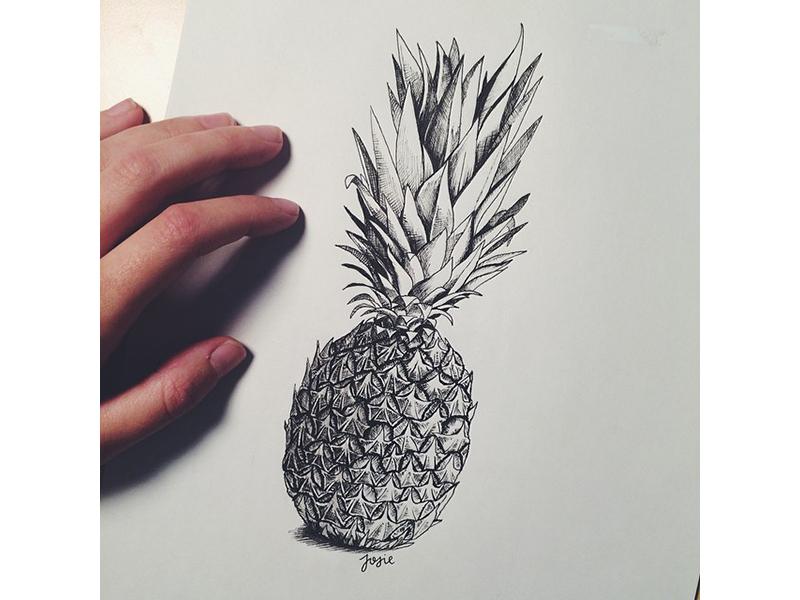 Pineapple pineapple ink sketch drawing