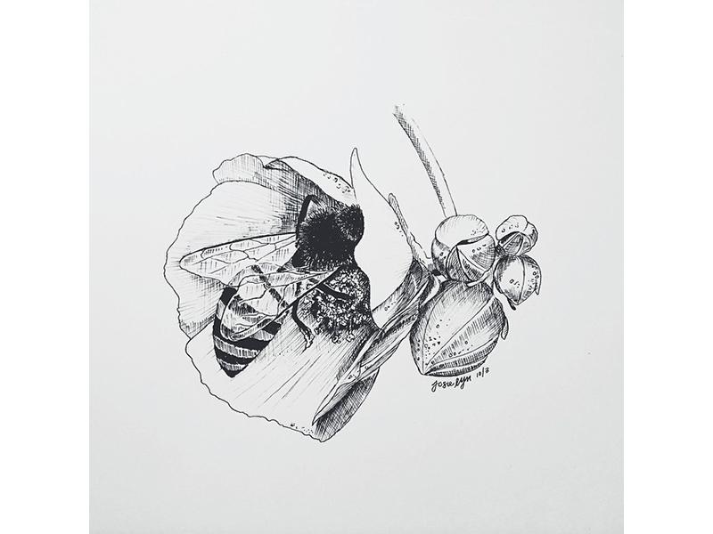 Honey Bee bee animal drawing ink flower sketch design art