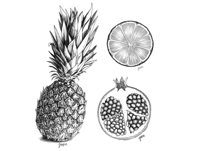 Fruit craze fruit pineapple pomegranate orange ink sketch inktober illustrator design