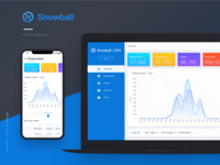 Snowball CRM redesign