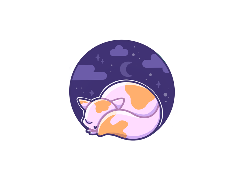 Your sleeping cat 💤