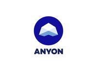 Anyon