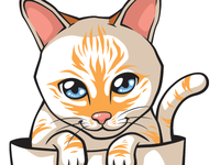Kitten Vector Illustration