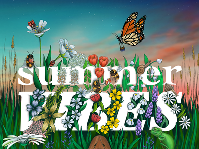Summer Vibes nature augmentedreality typography art procreate illustration digital illustration art