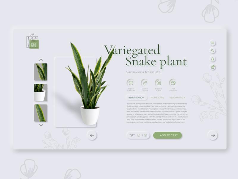 Online potted plant shop