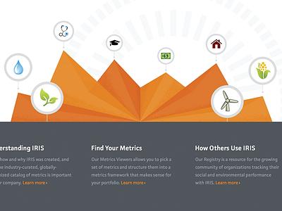 Find Those Metrics orange chart 3d iris sketch
