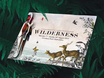 Wilderness Festival - Gatefold Die cut Mailer festival music art illustration die cut diecut