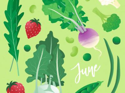 June seasonal fruit and veggies vegetables digital illustration adobe illustrator sustainability seasonal food digital drawing vector illustration