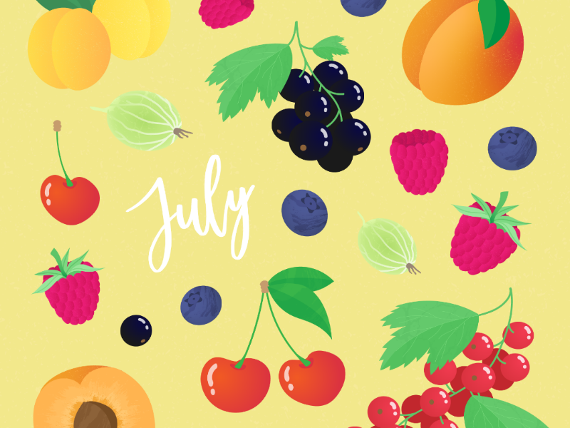The seasonal fruits of July fruits berries food seasonal sustainability digital illustration digital drawing illustration adobe illustrator