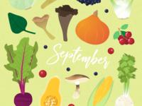 Seasonal vegetables of September