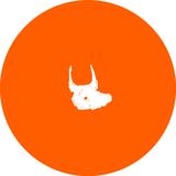 Toro Pinto