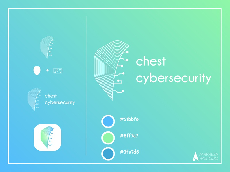 CHEST cybersecurity - more details