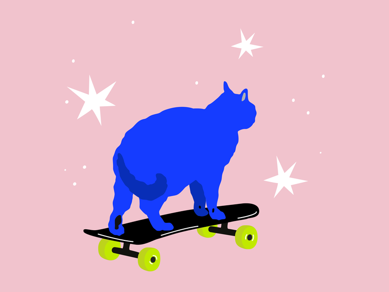 sk8r boi illustration skater cat