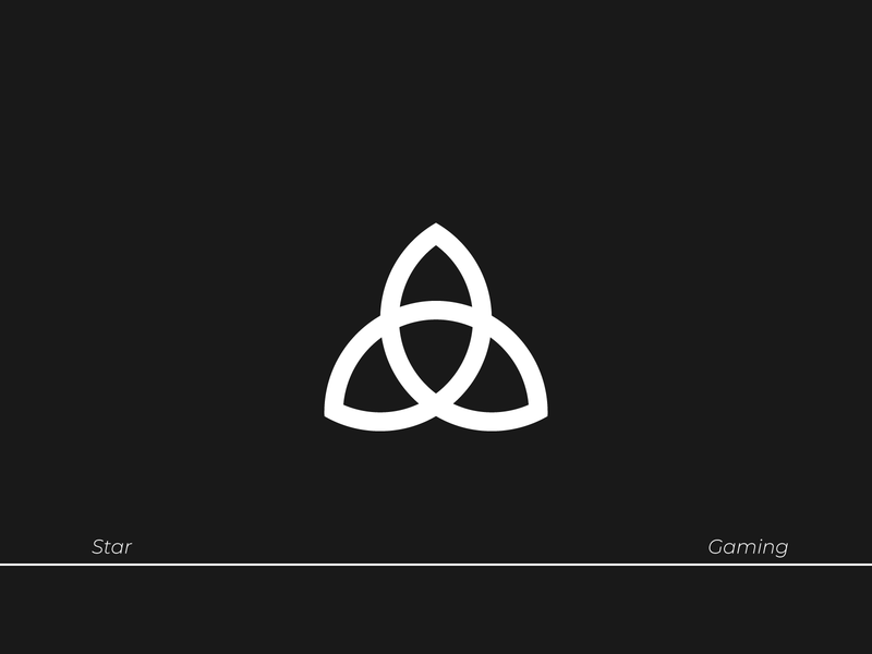 Star Logo type visual identity logodesign branding vector brand identity logo typography design