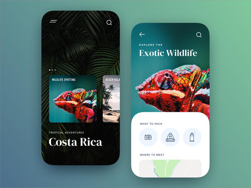 Costa Rica Travel travel ux app product design ui