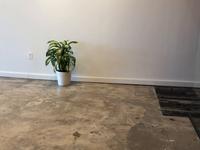 AR Houseplant UI