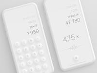 Calculator bigger
