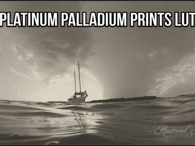 Platinum Palladium Prints LUTs