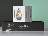 Free Square and Large Box Packaging Mockup