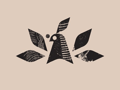 Xilo bird