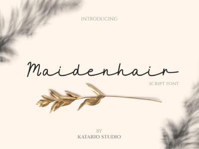 Maidenhair Font