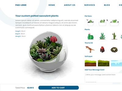 Custom Potted succulent plants illustration ui configurator ux user interface design app product configurator product customizer 3d web rendering 3d configurator