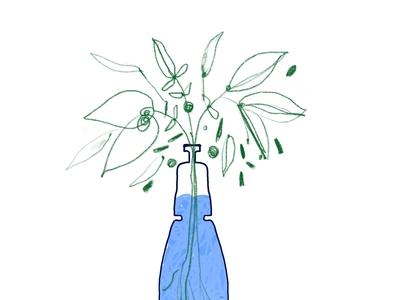 Green leaves in a water bottle