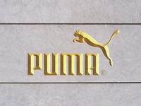Free Wall Gold Foil Logo Mockup