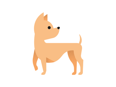 Lil Chihuahua vector smile gradient dog puppy chihuahua flat illustration