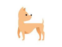Lil Chihuahua