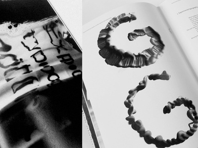 Bianca Maria Nitu Experimental typography 2018 -2019 editorial design typography design